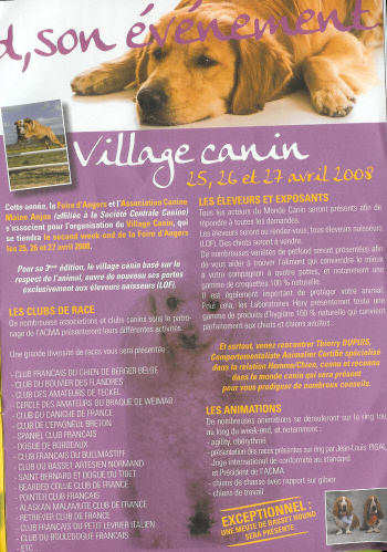 Affiche village canin Angers 2008